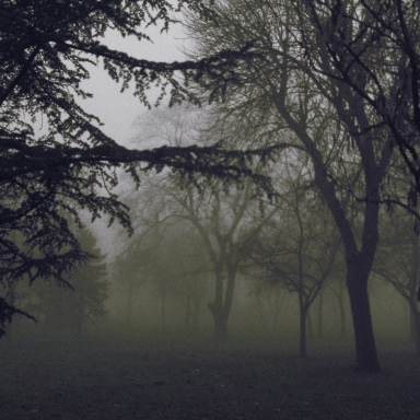 9 Of The Creepiest Encounters That Have Ever Happened In The Wilderness