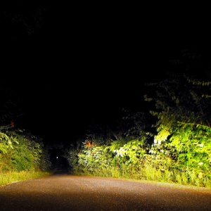 We Found Two Flares Lit On A Backcountry Road, And Shouldn't Have Stopped
