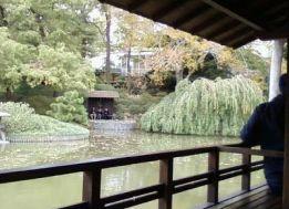 botanic+3+japanese