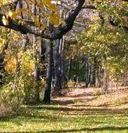 Hempstead Lake State Park 2
