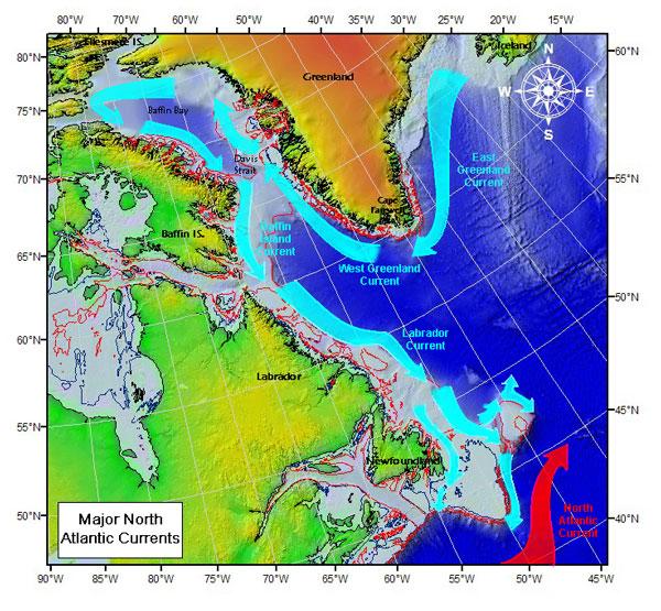 Labrador Sea via Wiki Commons