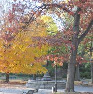 prospect park fall