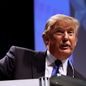 A Full Chronicle Of Donald Trump's Descent Into Presidential Candidate Absurdity