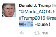 Does This Retweet From Donald Trump Sound Racist ToYou?