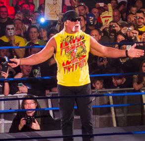 WWE Fires Hulk Hogan After Sex Tape Reveals RacistComments