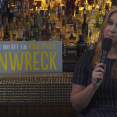 An Interviewer Called Amy  Schumer's 'Trainwreck' Character Skanky And She Refused To Let Him Get Away With It