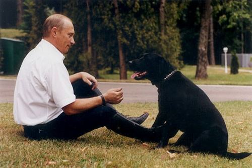 Vladimir_Putin_and_Koni-4