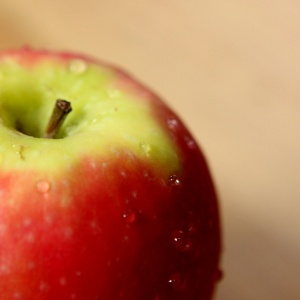 5 Myths About GMOs That You Probably Believed Were True