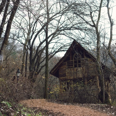 I Was Drunk When I Found This Cabin In The Woods And I'm Afraid There's Something Cursed Living There