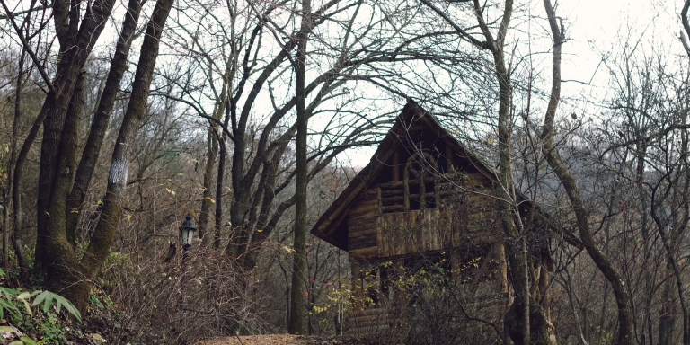 I Was Drunk When I Found This Cabin In The Woods And I'm Afraid There's Something Cursed LivingThere