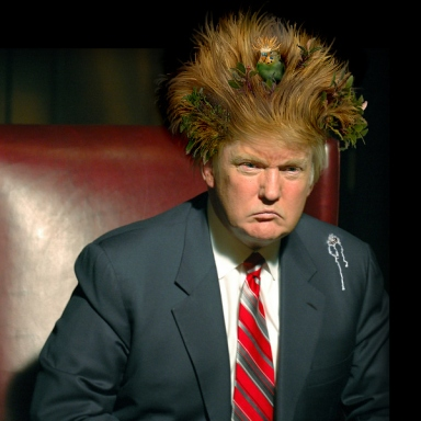 Hair Force One: 40 Of The Funniest Donald Trump Jokes