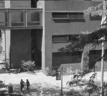 LIU campus humanities above