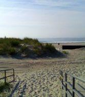 rockaway dune