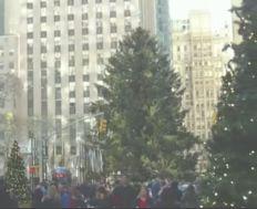 Rockefeller Center Xmas tree 1975