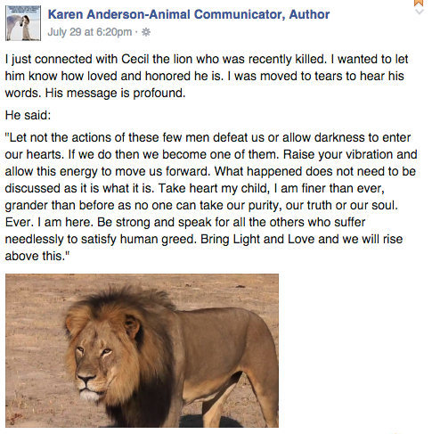 Facebook /  Karen Anderson-Animal Communicator, Author