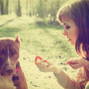 10 Reasons Why The Only Male You Should Chase Is Your Dog