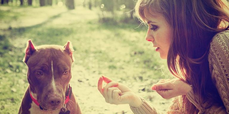 10 Reasons Why The Only Male You Should Chase Is YourDog