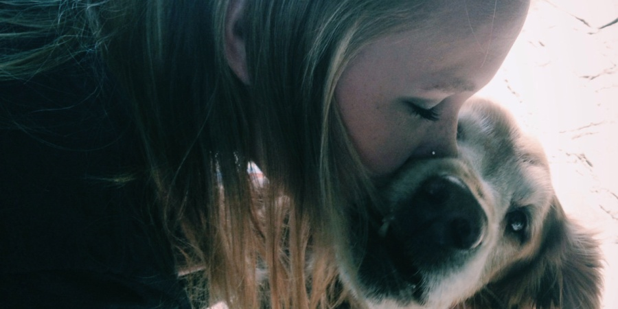 10 Things That Happen When You're An Aspiring DogMom