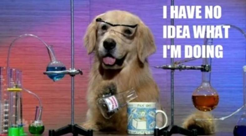 golden-retriever-and-science1