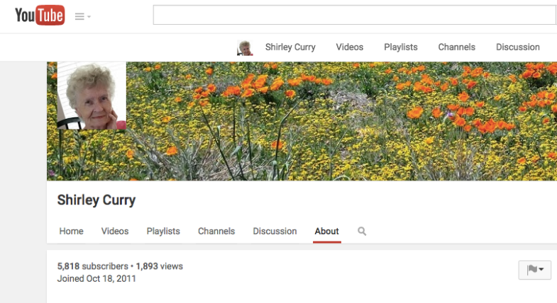 Youtube.com / Shirley Curry