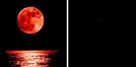 32 Hilarious Twitter Reactions To The Super Blood Moon
