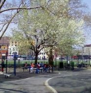 sternberg park spring