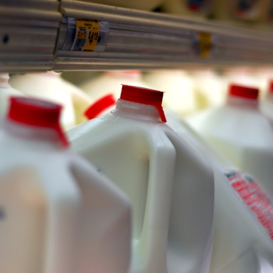 When Fat-Shaming Goes Too Far: We Need To Stop Shaming People Who Drink Milk