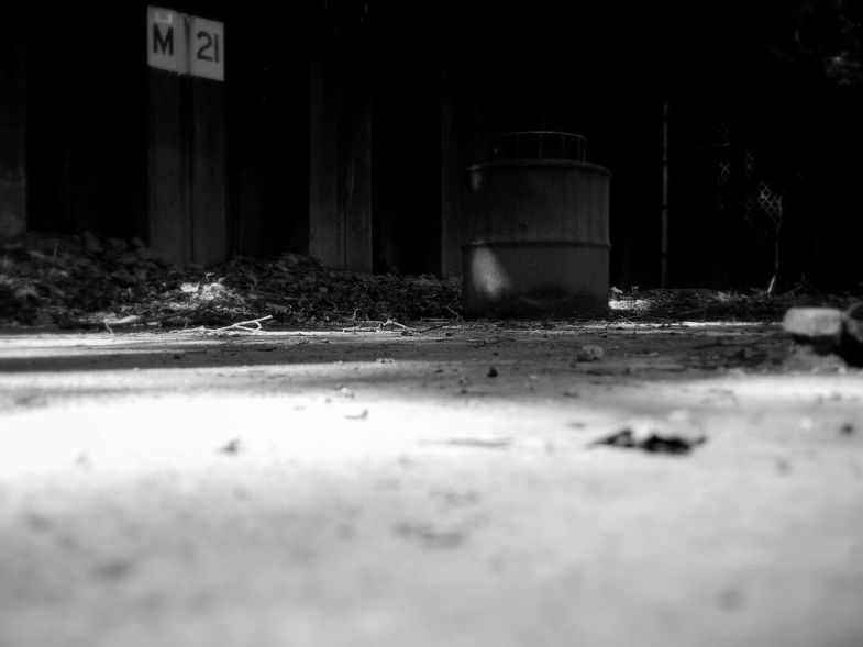 Flickr / Dave Gingrich