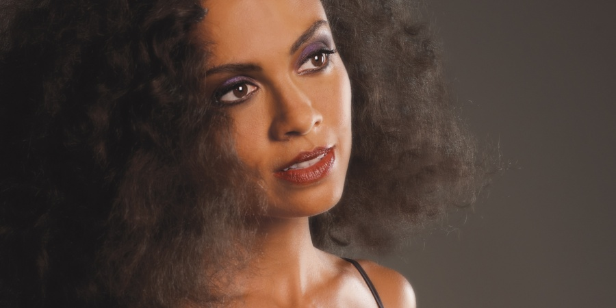 How To Be An Independent Artist In 2015: Getting To Know Amel Larrieux