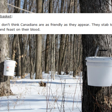 23 Hilarious Times Canada Totally Crushed It On Tumblr