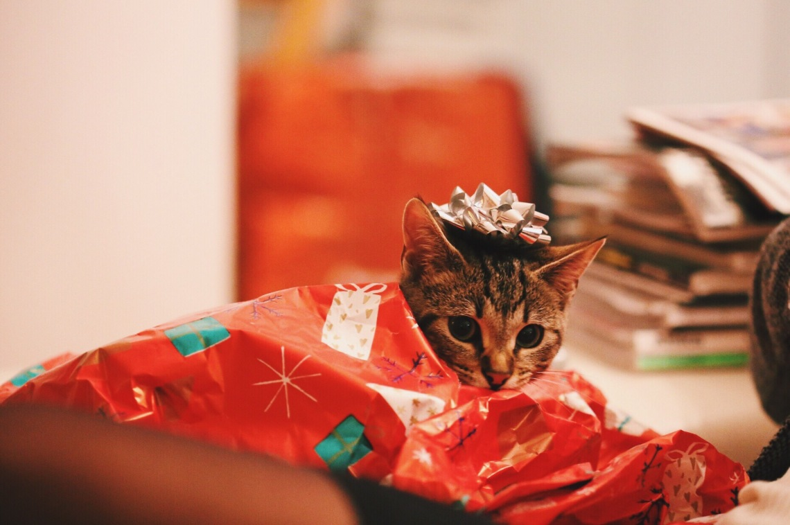 Guys Here S The Best Gift Giving Guide For The Girl You Just Started Dating Thought Catalog