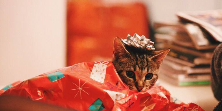 Guys, Here's The Best Gift-Giving Guide For The Girl You Just StartedDating