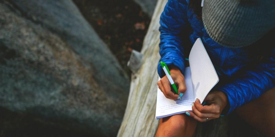 The Pleasure Of WritingLess