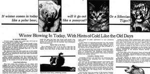 winter 1976 nyt