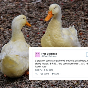 10 Tweets About Ducks That Will Make You Laugh Right Now