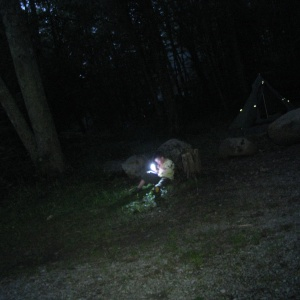 I Used To Love Camping Until I Learned What Lived In The Woods Behind My House