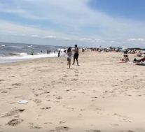 beach near ocean 2