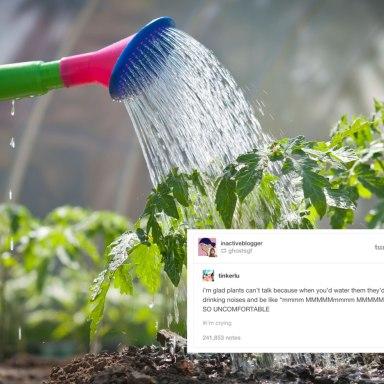 27 Times Tumblr Dared To Make A Joke