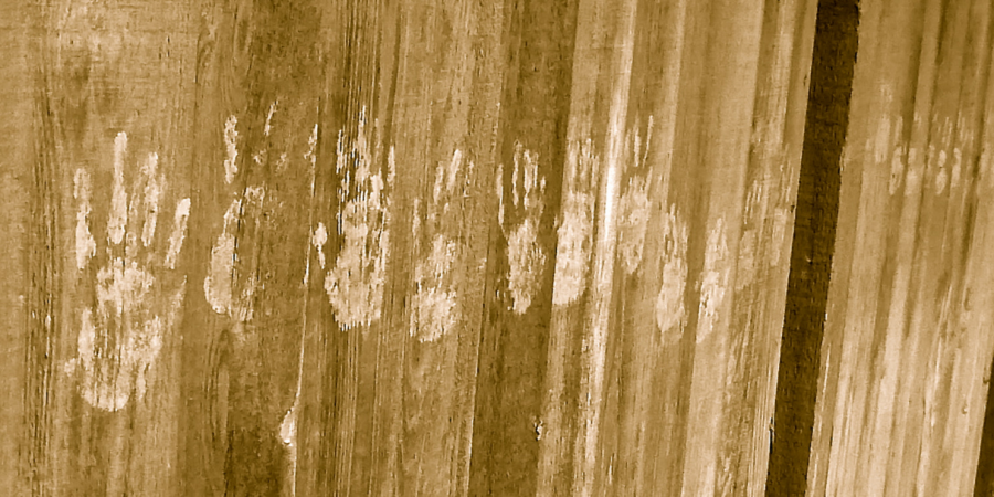 After Being Terrorized For Months, I Finally Came Face-To-Face With What Left Handprints On MyPorch