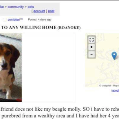 Girlfriend Orders Man To Get Rid Of His Dog, So He Posted This Craigslist Ad That Will COMPLETELY Solve The Problem