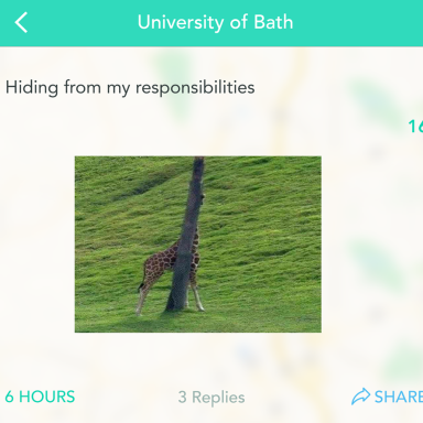 21 Hilarious Yik-Yaks That Anyone With 'Senioritis' Will Relate To