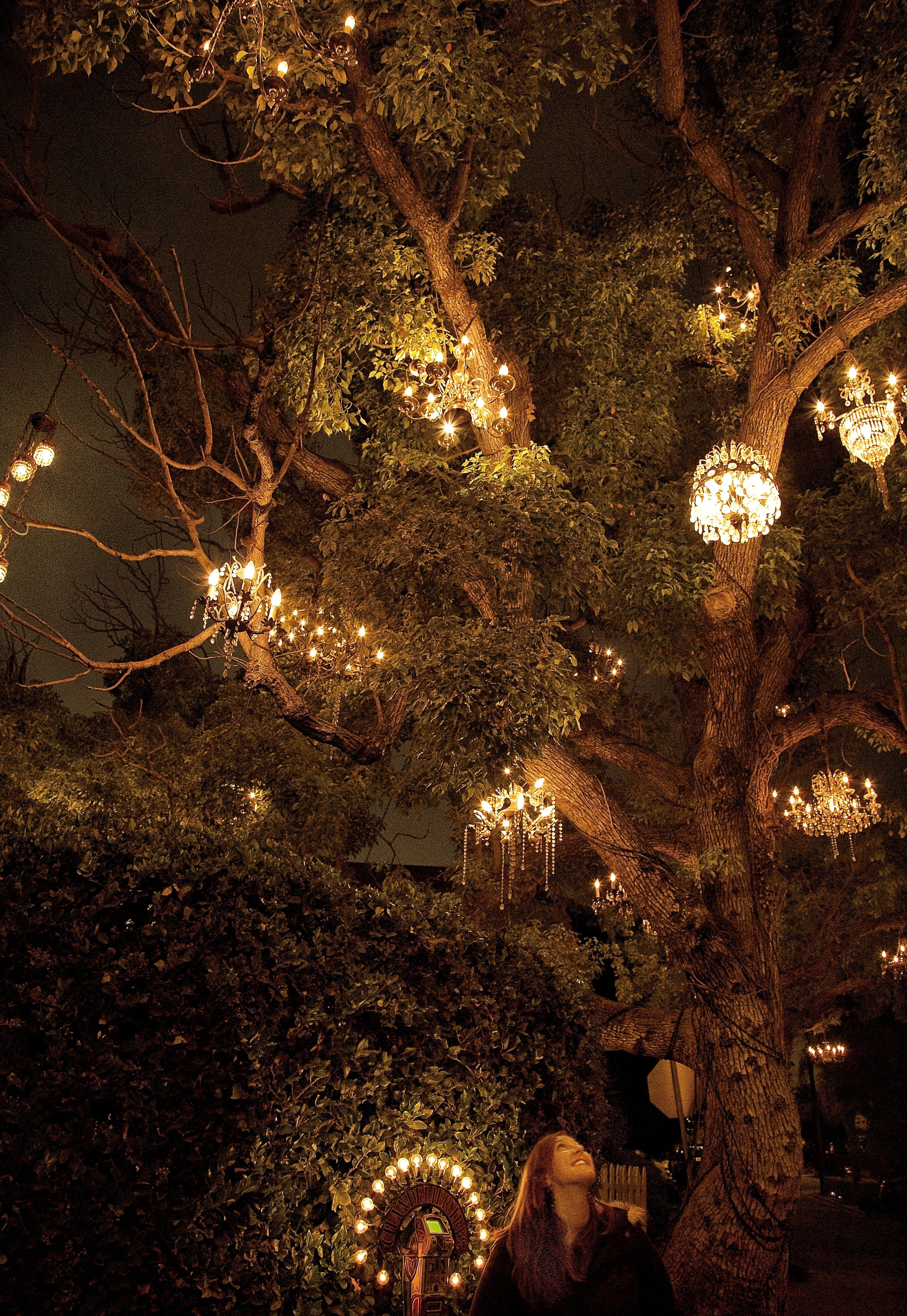 5. Chandelier Tree