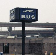 albany bus