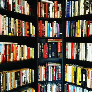 What Books To Base Your Life On (From Someone Who Reads A Lot)