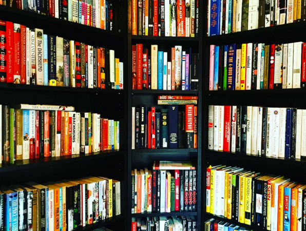 What Books To Base Your Life On (From Someone Who Reads ALot)