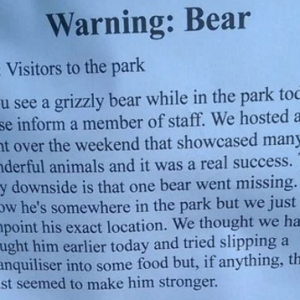 21 Completely Ridiculous Bulletin Board Ads From The World's Funniest IRL Troll