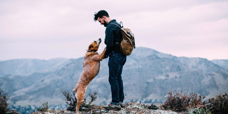 10 Things Only Someone Who Has Lost A Dog (And Their Best Friend)Understands