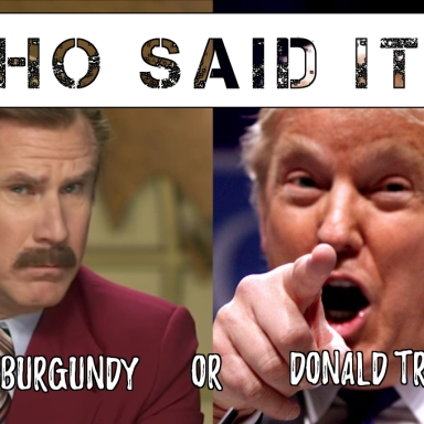 Quiz: Who Said It—Donald Trump Or Ron Burgundy?