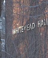 whitehead hall sign
