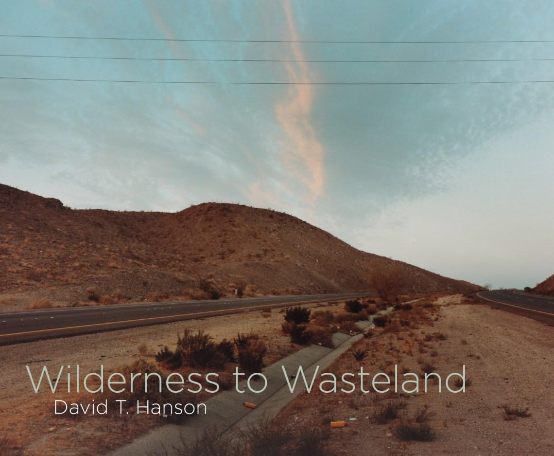 Wilderness to Wasteland by David T. Hanson
